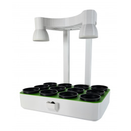 Plant growing system with...